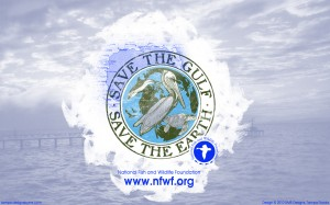 Save the Gulf National Fish and Wildlife Foundation Wallpaper